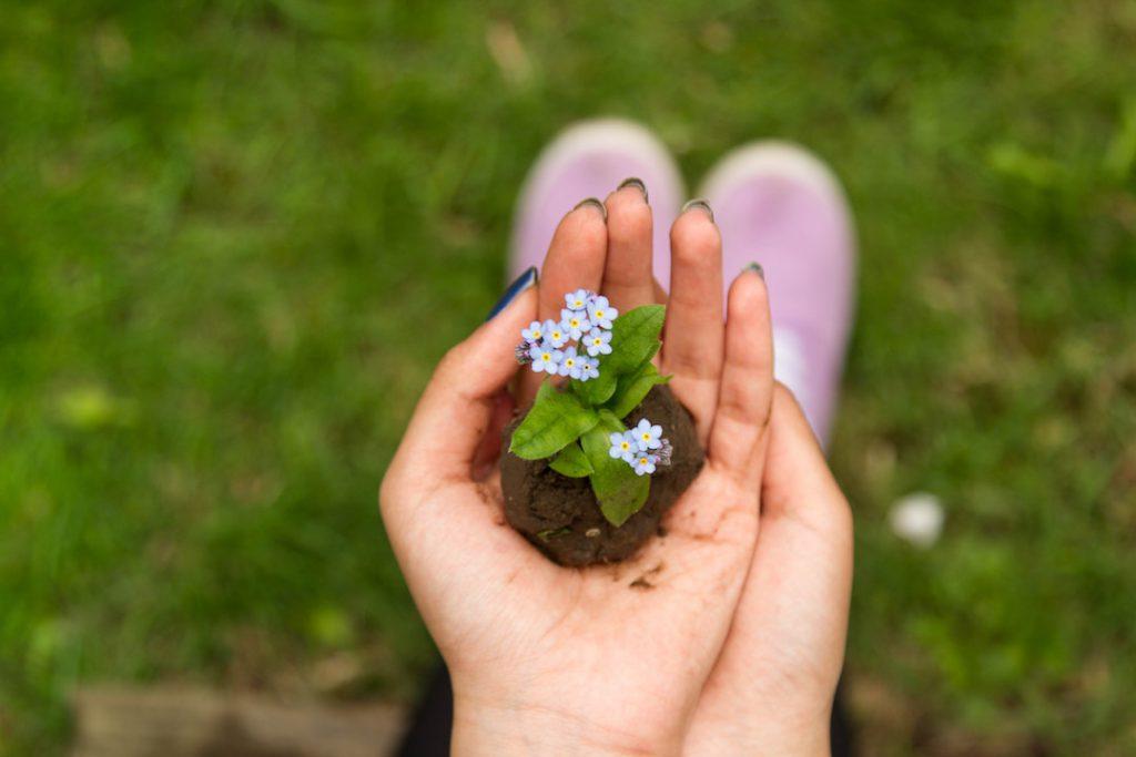 Vuoi consumare meno e essere più green? Un Home Energy Advisor può aiutarti