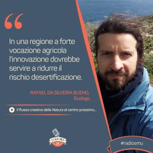 La citazione di Rafael di Creative Mornings