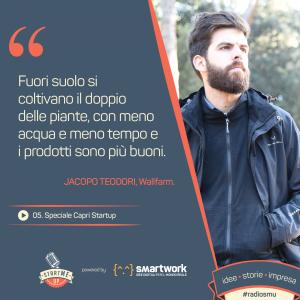 Jacopo Teodori di Wallfarm